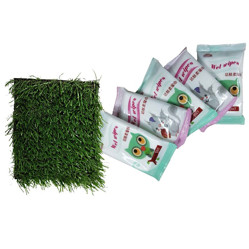 草坪垫10*10CM+5包便携婴儿湿巾